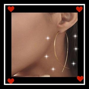 Jewelry - Beautiful fish shaped wire earrings